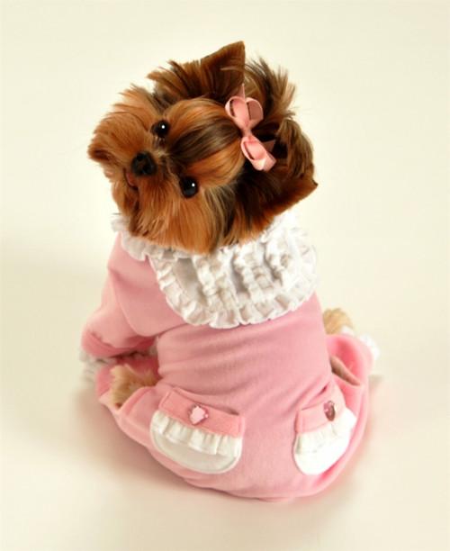 Pink Sweety Dog Jumper