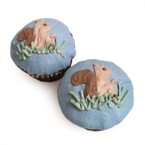 Woodland Squirrel Cupcakes (set of 6)
