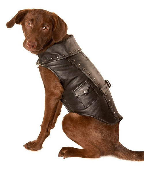 Dog jacket | Black Leather Motorcycle Dog jacket