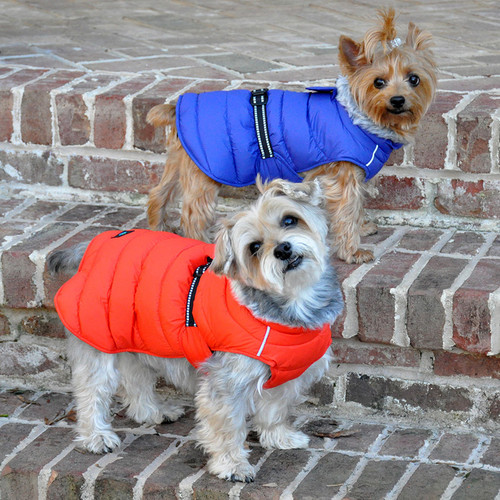 Puffer Coat for Big Dogs and Small Dogs