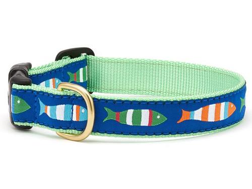 Funky Fish Dog Collar