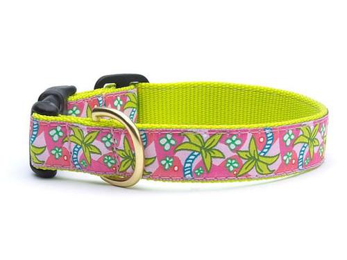 Pink Palms Dog Collar