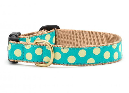 Teal Yellow Dot Dog Collar