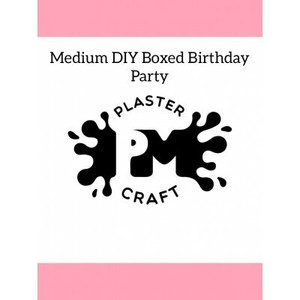 PM Plaster Craft Medium DIY Boxed Plaster Party