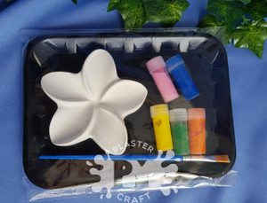 PM Plaster Craft Frangipani Small Gift Pack