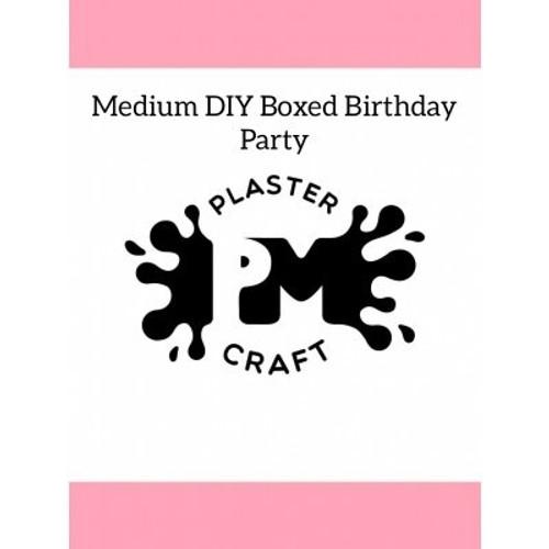 PM Plaster Craft Medium DIY Boxed Plaster Party