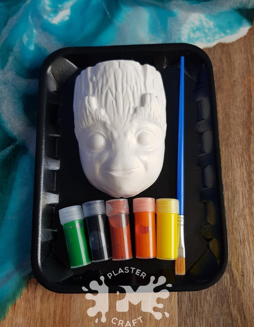 PM Plaster Craft Plant Character Face Small Gift Pack