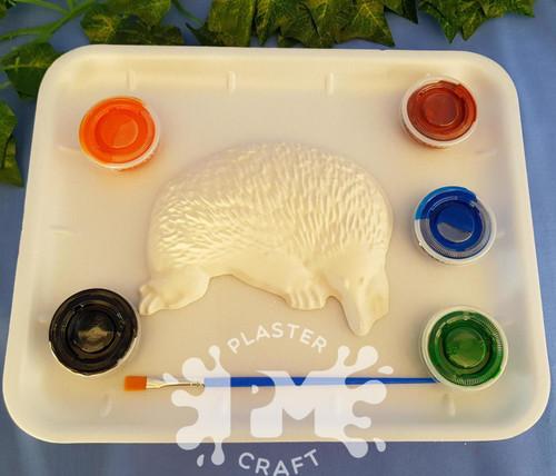 PM Plaster Craft Echidna Medium Gift Pack