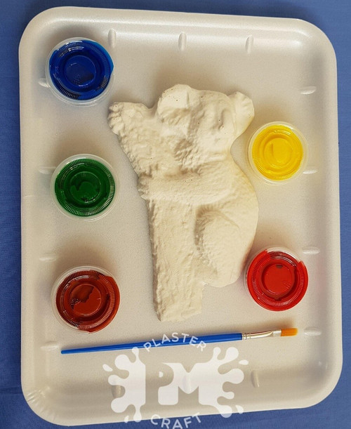 PM Plaster Craft Koala Medium Gift Pack