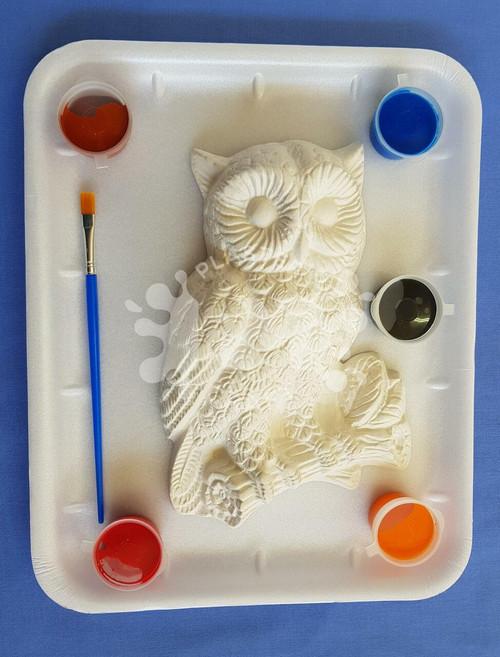 Owl Medium Gift Pack