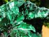 Medium Sized Silky Chatoyant Velvety Green Malachite Specimens