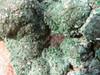 Natural Malachite and Chrysocolla Specimens from Kolwezi, Congo