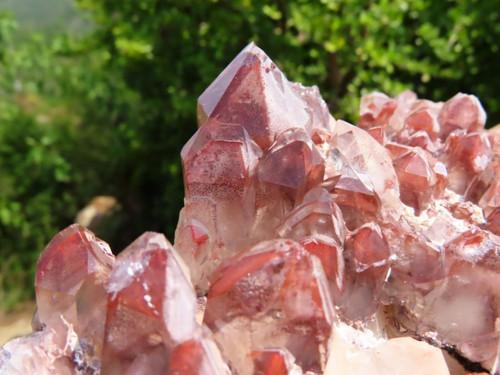 Natural Red Hematoid Phantom Quartz Cluster from Zambia
