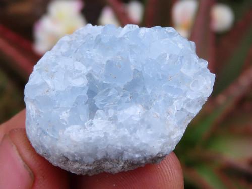 Natural Blue Celestite Crystal  Specimens - Lot 2 - Grab Bag