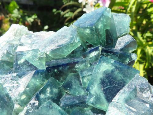 Natural Large Cubic Emerald Fluorite Specimen