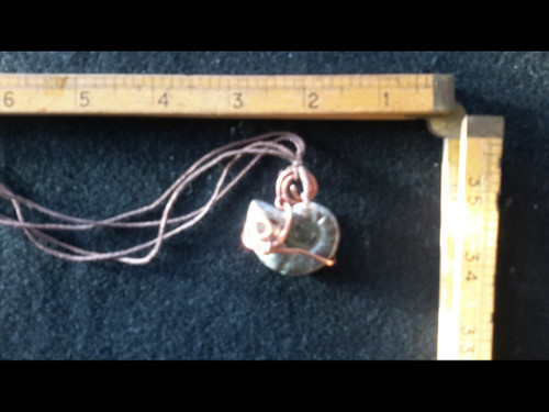 Gray Ammonite Fossil Copper Wire Wrapped Pendant