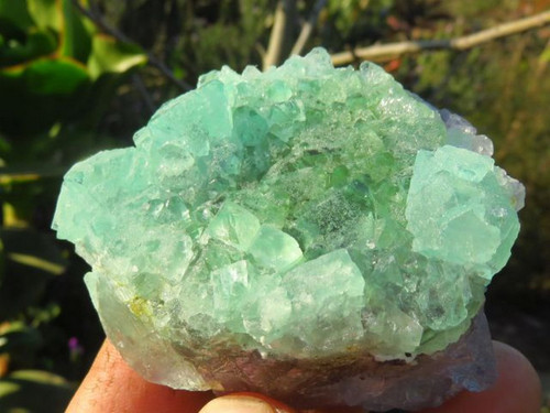 Natural Green Fluorite Specimens from South Africa