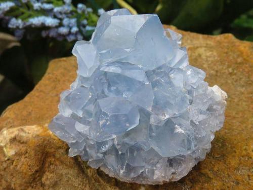 Natural Blue Celestite Crystal Cluster Specimens - Grab Bag