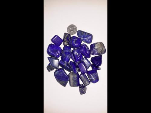 Lapis Lazuli - Tumbled Stone - by the pound