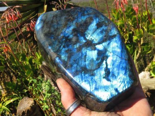 Polished A Grade Large  Polished Labradorite Standing Free Form