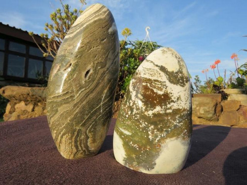 Beautiful pair of Matching Polished Green Ocean Jasper Freeforms