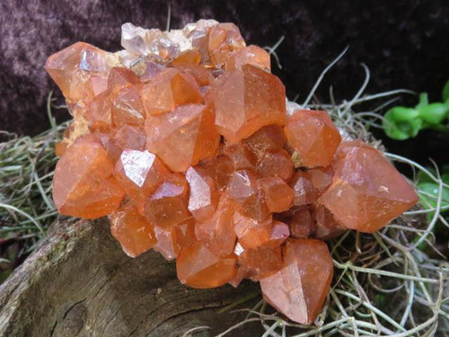 Natural Small Tangerine Quartz Cluster