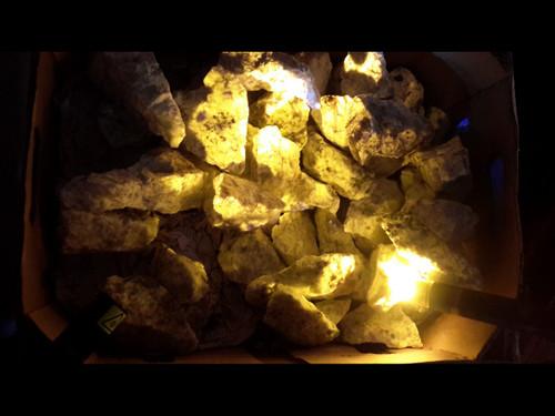 A Grade Wernerite Specimen - Grenville, Quebec - Grab Bag - Bright Yellow LW Fluorescent