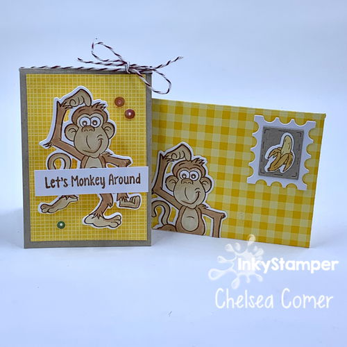 Mini Card and Envie Class with InkyStamper