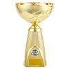 Trinidad gold multisport cup at 1stPlace4Trophies