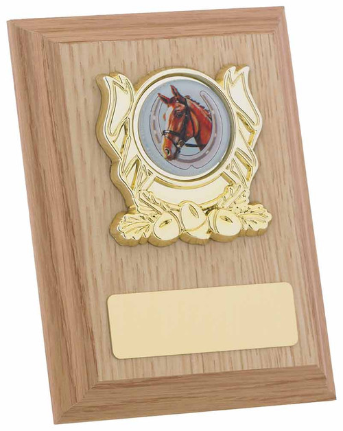 Light Oak Plaque for any sport or activity available in 3 sizes