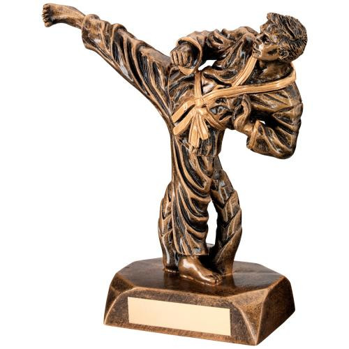 Fabulous detailed male Karate Martial Arts Award includes FREE engraving.