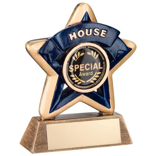 Blue School House Award