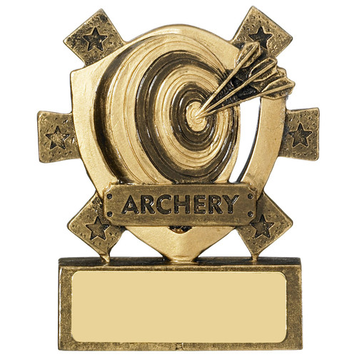 Star Archery Award target and arrows FREE engraving at 1stPlace4Trophies