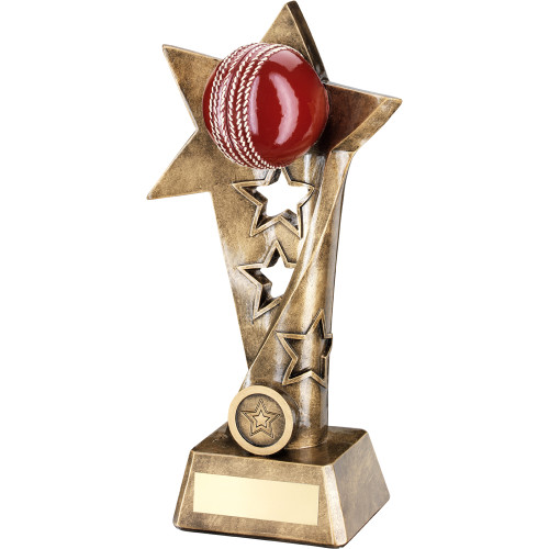 Exquisite 3D red cricket ball award with a hollow star trophy stem from 1st Place 4 Trophies