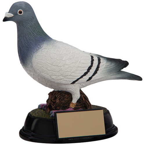 Elite pigeon award a beautiful realistic detailed cheap trophy prize award to win
