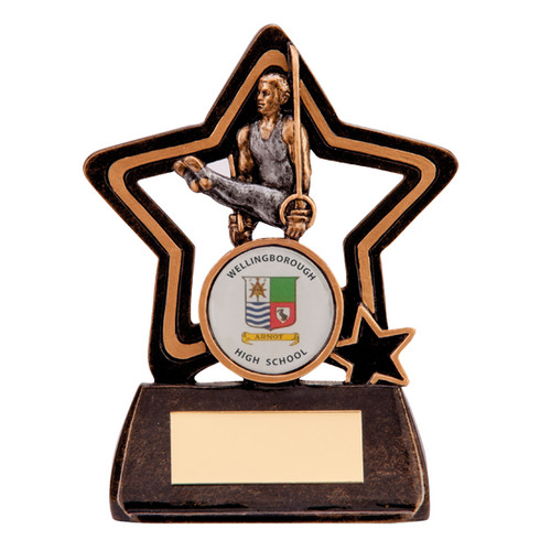 Little Star resin budget great value cheap gymnastics award