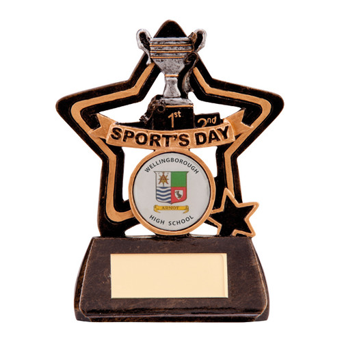 Little Star Sports Day School Club Team cheap budget award