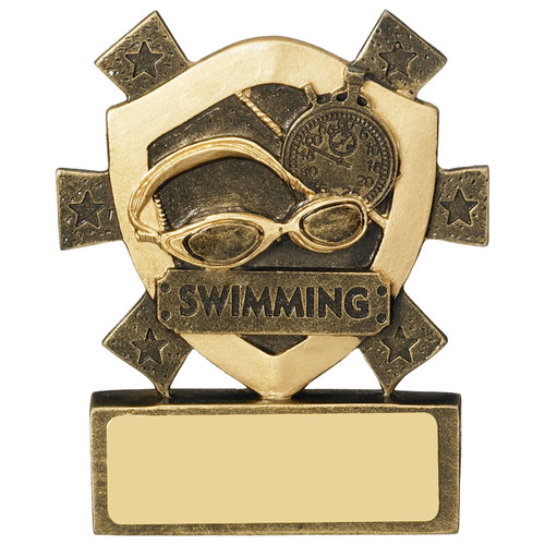 Budget CHEAP quality Star Shield Swimming Award ONLY £3.50 and FREE Engraving