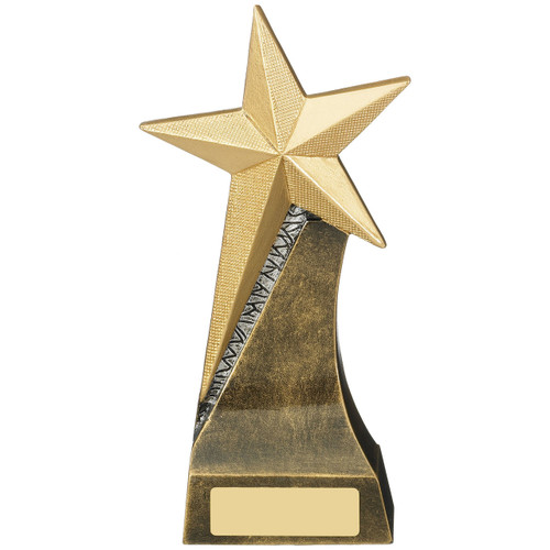 Stylish Gold Star Achievement Trophy available in 3 sizes at 1st Place4Trophies