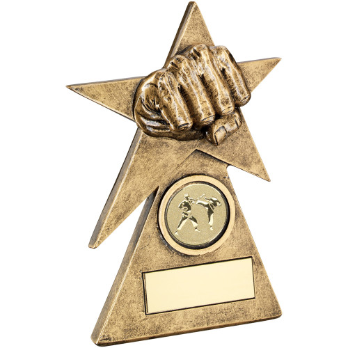 Clenched fist through a gold star on a pyramid Martial Arts Trophy.  3 Sizes and FREE engraving included.