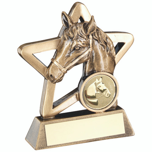 Gold Star great value horse head award available in 2 sizes and with FREE engraving.