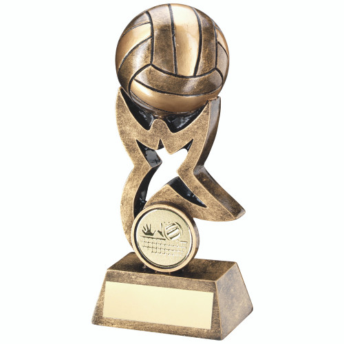 Full 3D Volleyball Award available in 3 sizes and with FREE engraving.