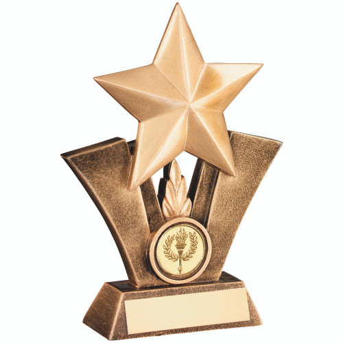 Multisport and activity gold star trophy available in 3 sizes and with FREE engraving.