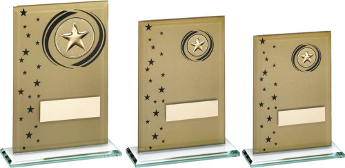 Gold & Black Glass Multisport Award - 3 sizes that include FREE personalised engraving.