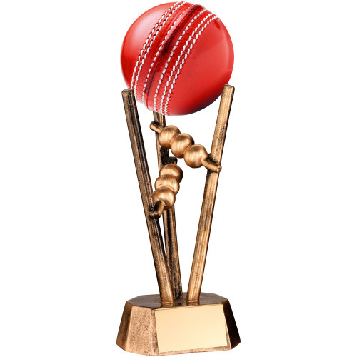 Cricket Ball Holder Trophy. An award that holds your own cricket ball. RF20
