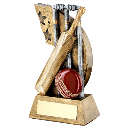 Superb low cost cricket award in 3 sizes from 1stPlace4Trophies