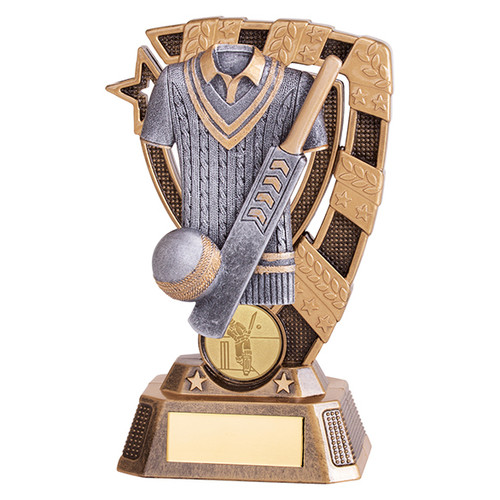 Euphoria Cricket Award available in 4 super sizes with FREE Engraving