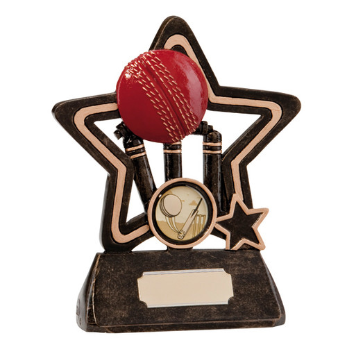 Little Star Cricket ball and wickets mini award available in 2 sizes with FREE engraving.
