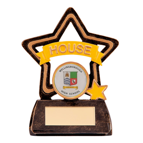 Little Star School House Award in Yellow available with FREE engraving