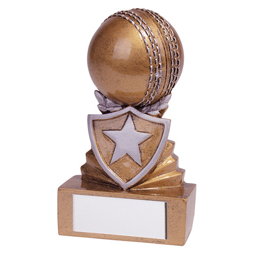 Shield Mini Cricket Award. Budget price and includes FREE engraving.